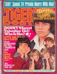 Tiger Beat  Donny, Randy, Tony - February 1974 (Collectible Single Back Issue Magazine)
