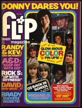 Flip Teen Magazine Donny, Michael Jackson, Cassidy, Williams Brothers November 1973 Vol. 9 No. 2 (Collectible Single Back Issue Magazine)