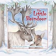 The Little Reindeer  (Paperback)