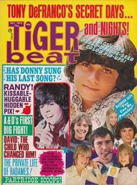 Tiger Beat  Donny, Randy, Tony - October 1973 (Collectible Single Back Issue Magazine)