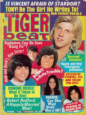 Tiger Beat Donny, Marie, Randy, Vincent, Tony - October 1974 (Collectible Single Back Issue Magazine)