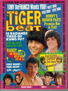 Tiger Beat  Donny, Randy, Tony - November 1973 (Collectible Single Back Issue Magazine)