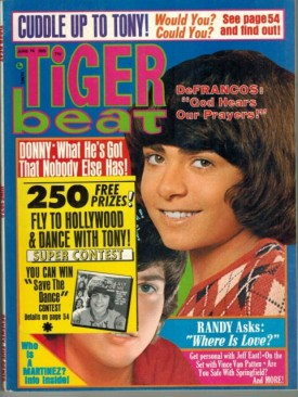 Tiger Beat  Donny, Randy, Tony - June 1974 (Collectible Single Back Issue Magazine)