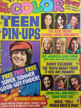 Teen Pin-Ups Jackson Five, Donny Osmond, David Cassidy February 1973 (Collectible Single Back Issue Magazine)