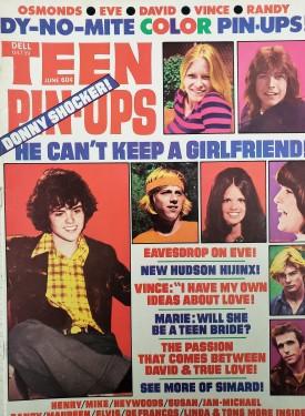 Teen Pin-Ups Michael Jackson, Elvis Presley, David Cassidy, Susan Dey, Maureen McCormick June 1973 (Collectible Single Back Issue Magazine)