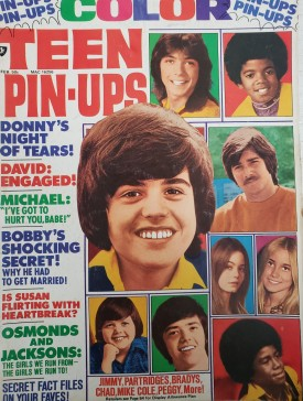 Teen Pin-Ups Vince, Eve, Elvis, The Hudsons, David, Tony, Marie August 1975 (Collectible Single Back Issue Magazine)