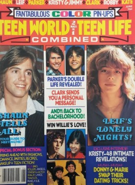 Teen World / Teen Life Combined 2 in 1 Issue Shaun Cassidy, Leif Garret, Kristy McNichol June 1978 (Collectible Single Back Issue Magazine)