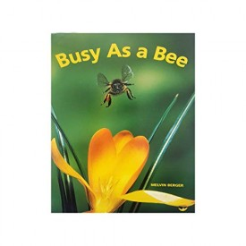 Busy as a Bee: Mini Book (Paperback)