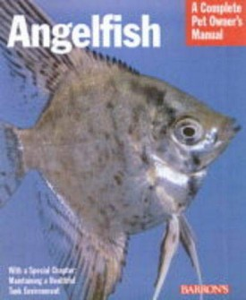 Angelfish (Complete Pet Owners Manuals) (Paperback)
