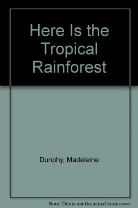 Here Is the Tropical Rainforest