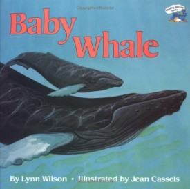 Baby Whale (Reading Railroad) (Paperback)