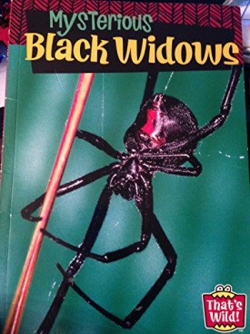 Mysterious Black Widows (Thats Wild!) (Paperback)