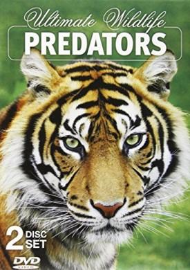 Ultimate Wildlife Predators 2 DVD Set (DVD)