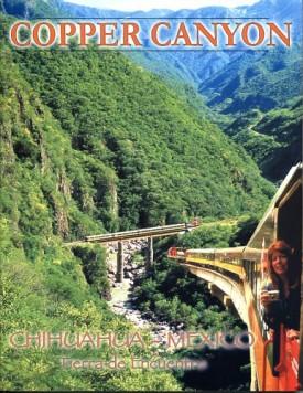 The Puzzle of Oasis America: Children of Kokopelli (Paperback)