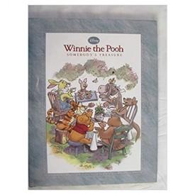 Winnie The Pooh Somebody's Treasure  (Hardcover)