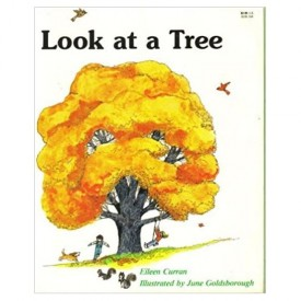 Look at a Tree (Now I Know First Start Reader (Paperback)