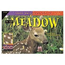 In the Meadow (Look Once, Look Again Science Series)