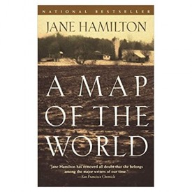 A Map of the World: A Novel (Paperback)