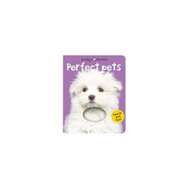 Bright Baby Touch & Feel Perfect Pets (Bright Baby Touch and Feel) (Hardcover)