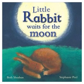 Little Rabbit Waits For the Moon (Hardcover)