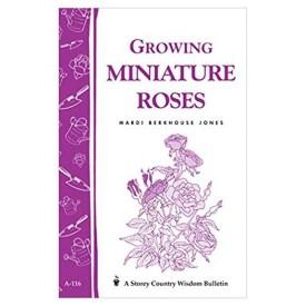 Growing Miniature Roses: Storey's Country Wisdom Bulletin A-116 (Storey/Garden Way Publishing Bulletin) (Paperback)