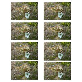8-Pack: Outdoor Garden Copper Colored Turtle Spinner & Trellis Yard Art No. 715