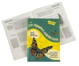 Insect Lore Live Butterfly Activity Book