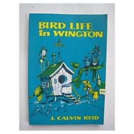 Bird Life in Wington: Practical Parables for Young People
